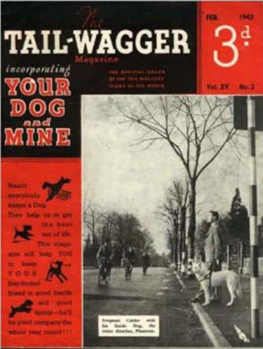 tailwagger 1943
